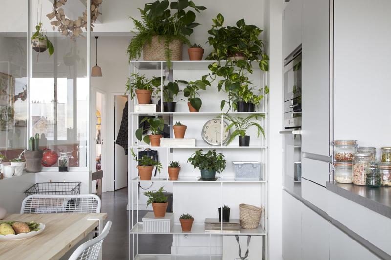 we love green on met en valeur ses plantes vertes sloft magazine. Black Bedroom Furniture Sets. Home Design Ideas